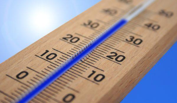ocf-vitrine-refrigeree-temperature-vitrine-au-printemps